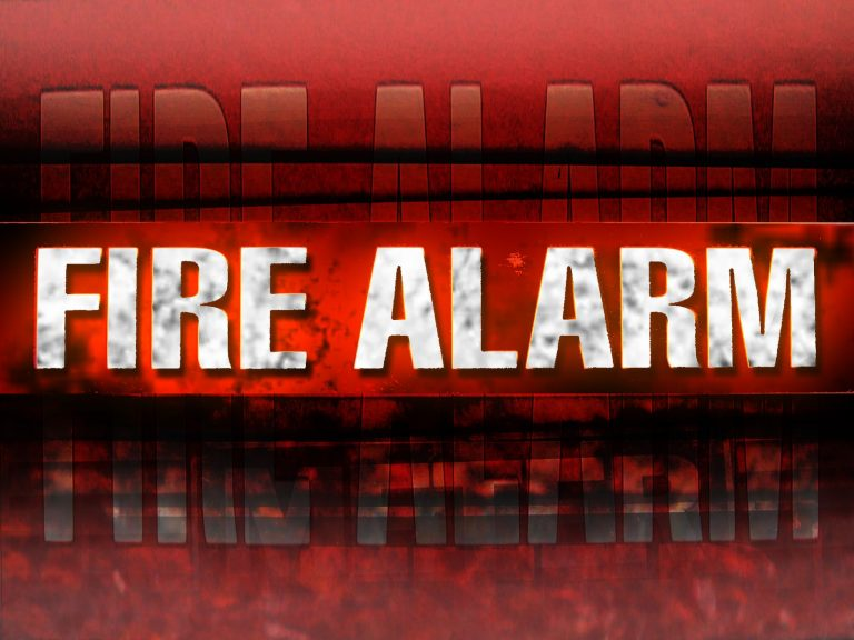 Fire Alarm System Sussex